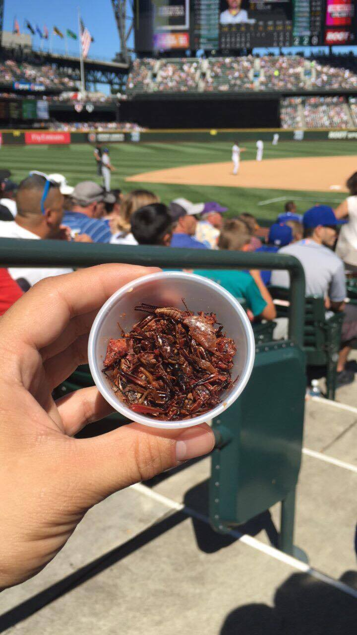 Safeco Toasted Grasshoppers